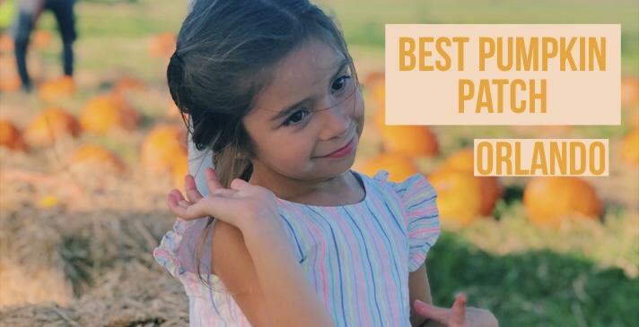 Los mejores Pumpkin Patch para ir enOrlando